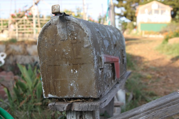 neighbor's rustic mailbox