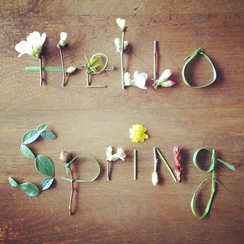 Hello Spring via https://itsjoulife.wordpress.com/2013/03/20/hello-spring/#