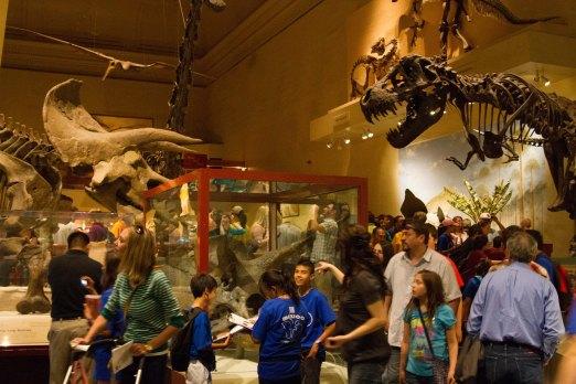 Natural History Museum via it's jou life http://wp.me/p3cljj-ad