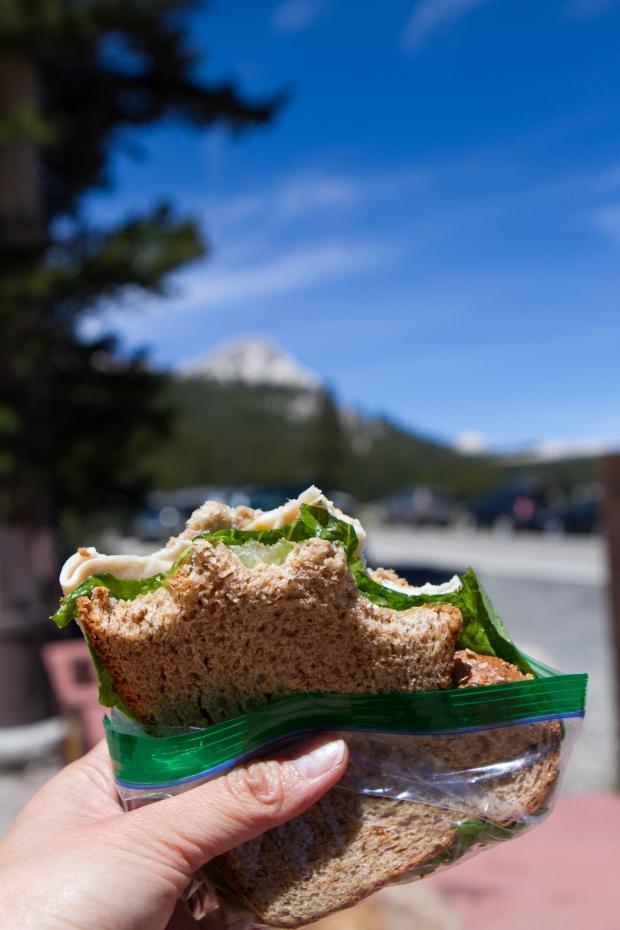 2015 Sandwich