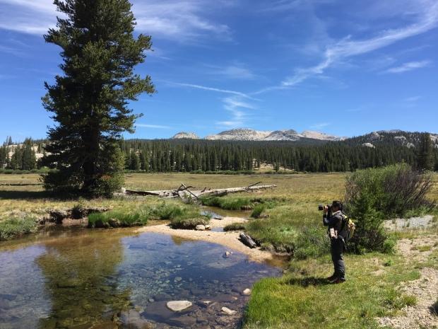 2015 Yosemite_TinyMatters